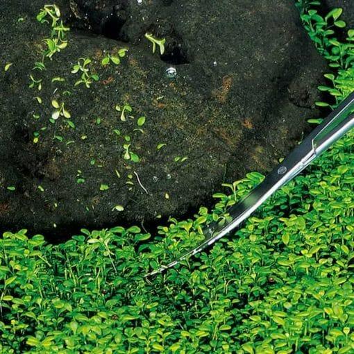 Eğik Uçlu Bitki Budama Makası