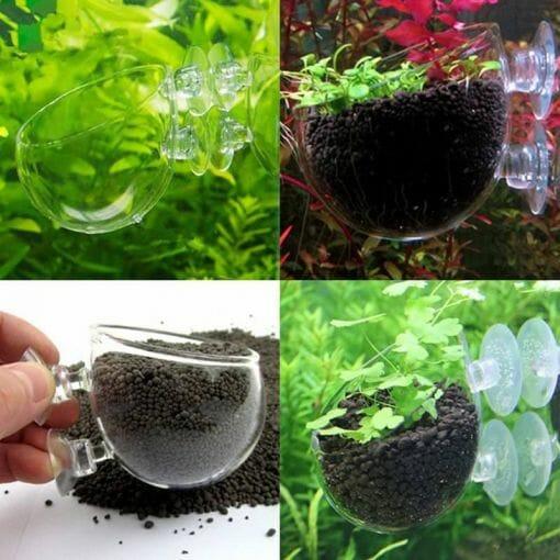 Kristal Cam Akvaryum Bitki Saksısı