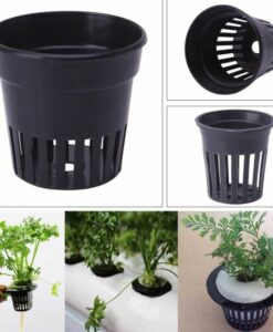 Plastik Bitki Saksısı
